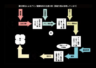 酸分解法によるアミノ酸製造
